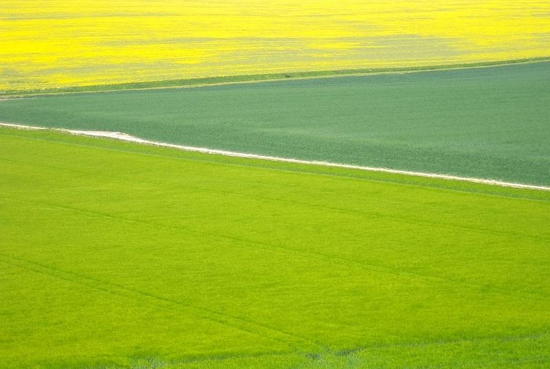 Crop_landscape3-201306